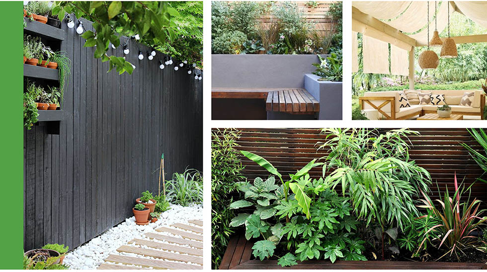 collage of outdoor spaces with painted walls and jungle style plants.