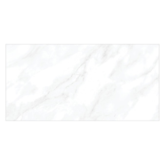 Worcester Grey Carrara Gloss Tile - 600x300mm